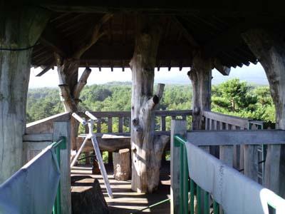 小林造園絶景最上階