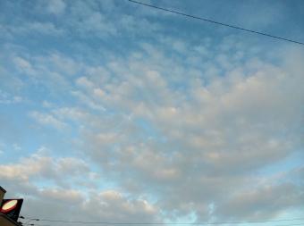 写真 2014-06-10 18 49 15 (1280x951)