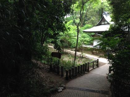 20140504nogawa_4_convert_20140505221440.jpg
