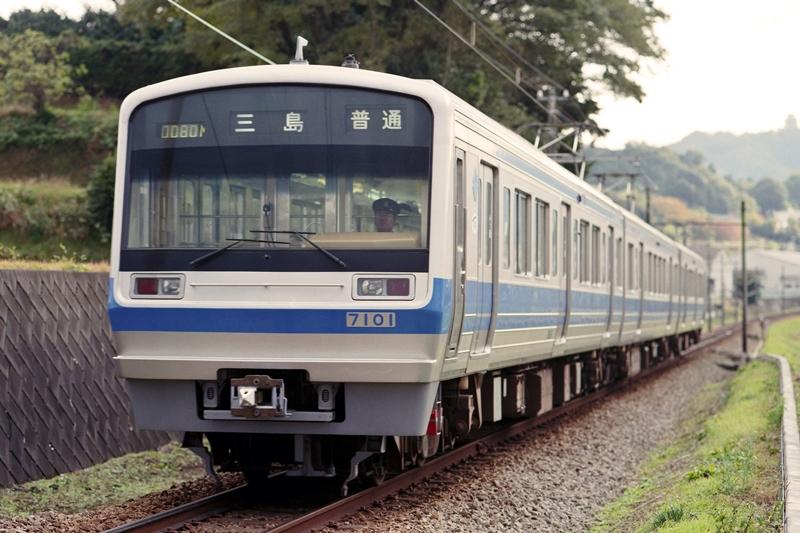 1998年11月22日 大仁~田京にて (2)