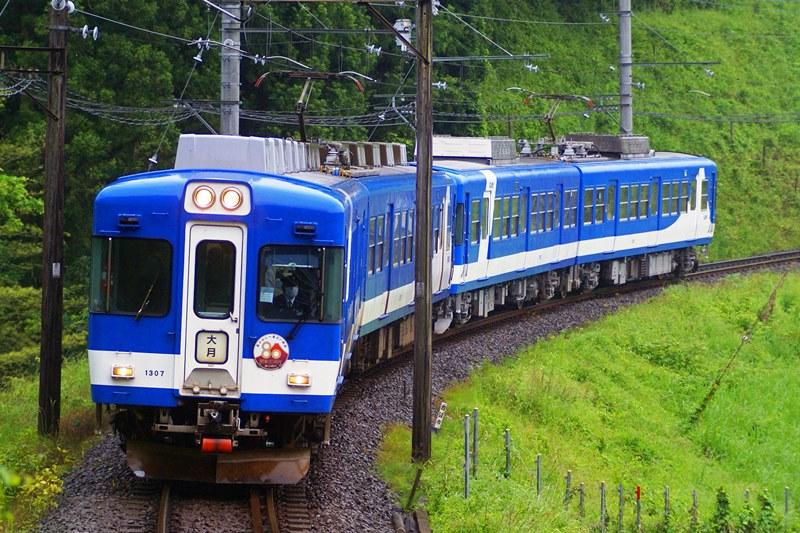 2009年6月5日 田野倉~上大月にて