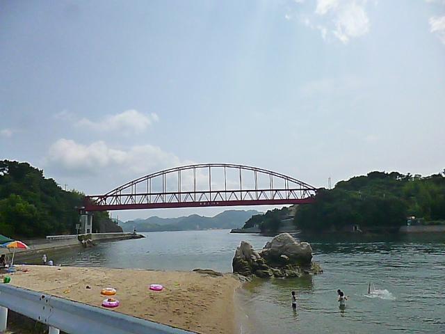 岩子島の特産は分葱ですって