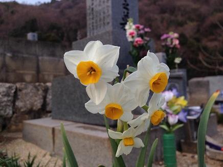 3092014墓参りS1
