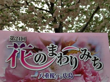 4162014花のまわりみちS2