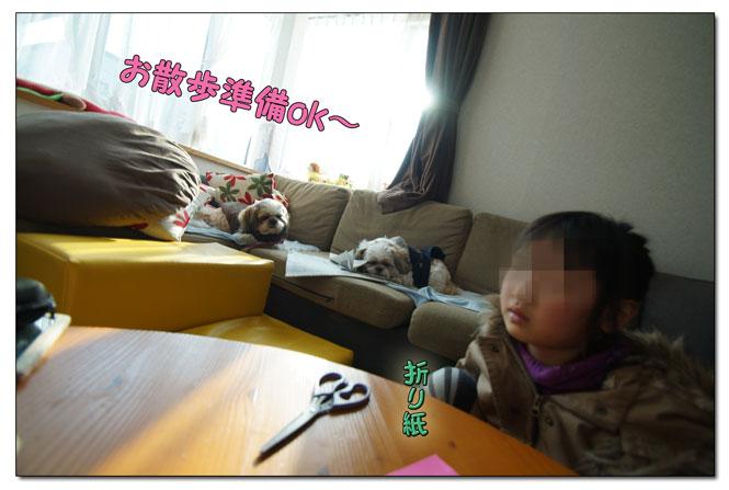 DSC07025_4818gh.jpg