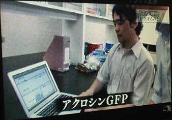NHKスペシャル遠藤高帆