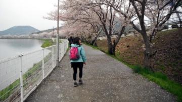 2014-4-6sanuki006.jpg