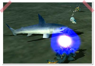 140629_3サメ