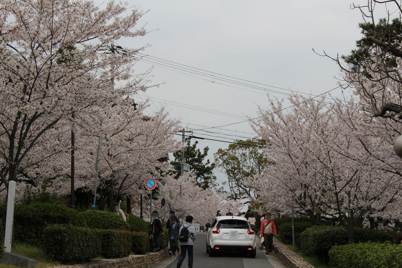 須磨浦公園-38