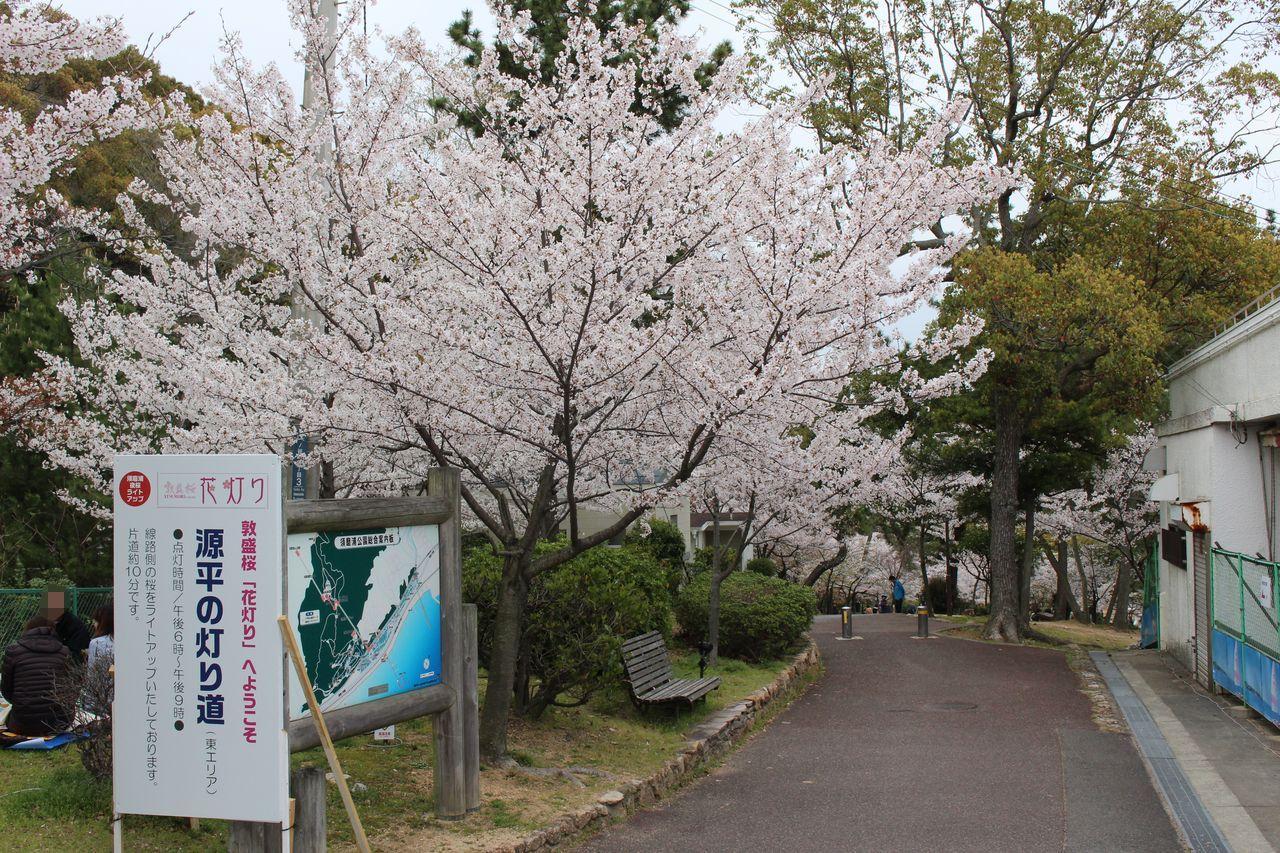 須磨浦公園-39