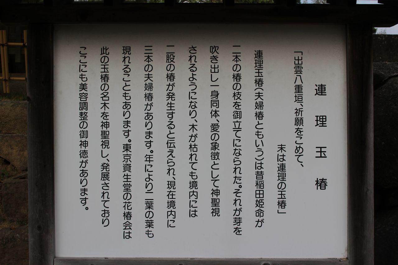 八重垣神社-6