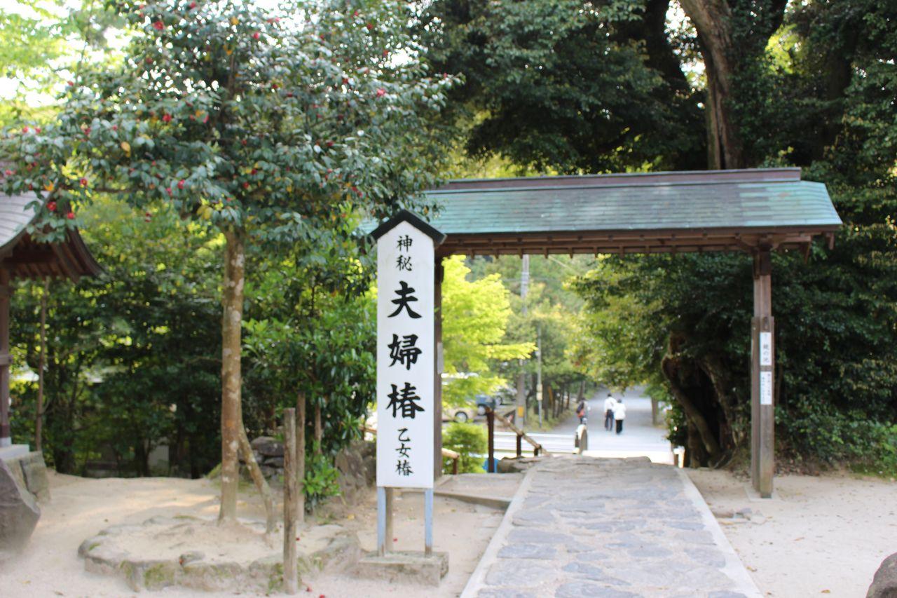 八重垣神社-29