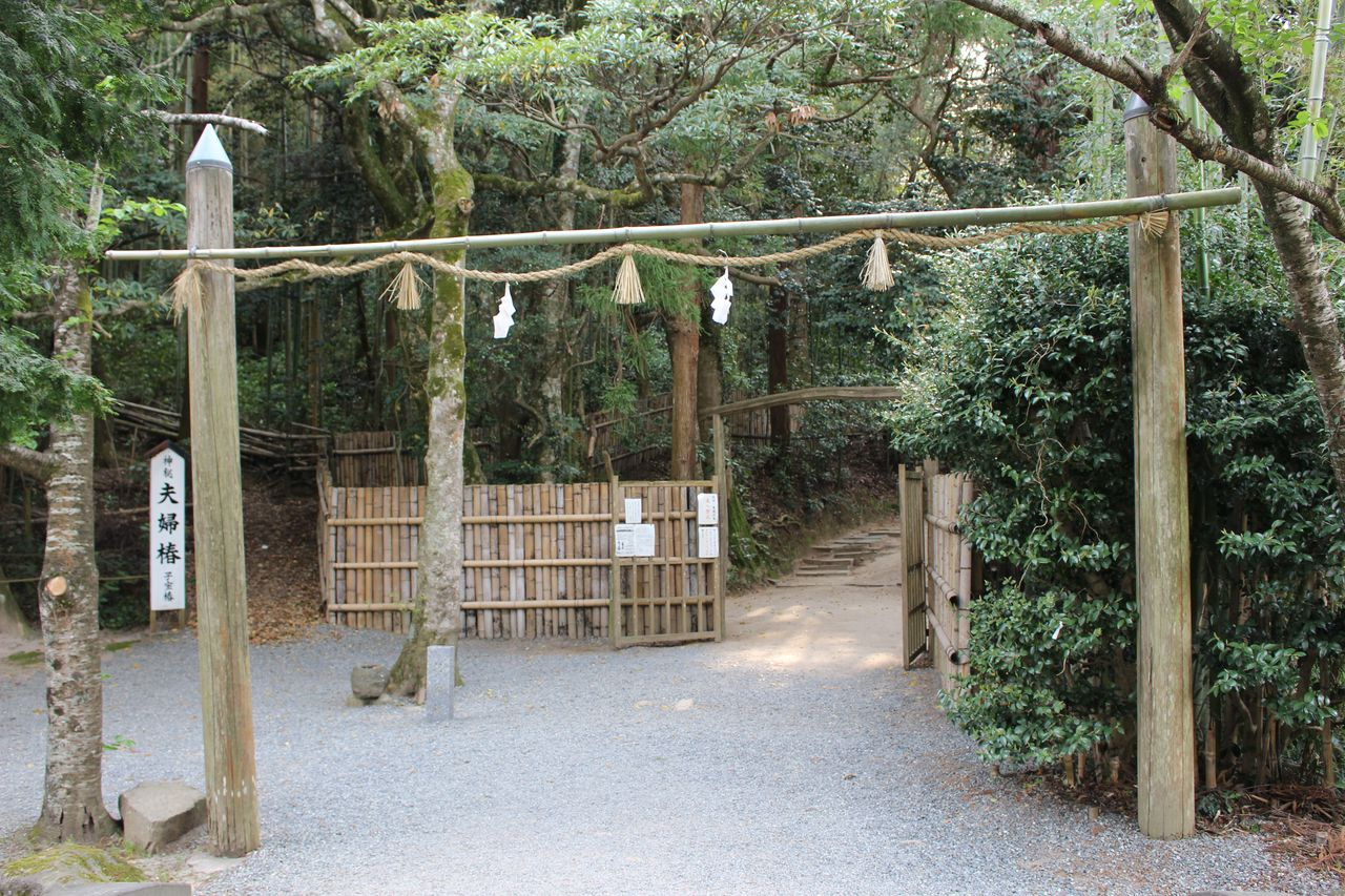 八重垣神社-28