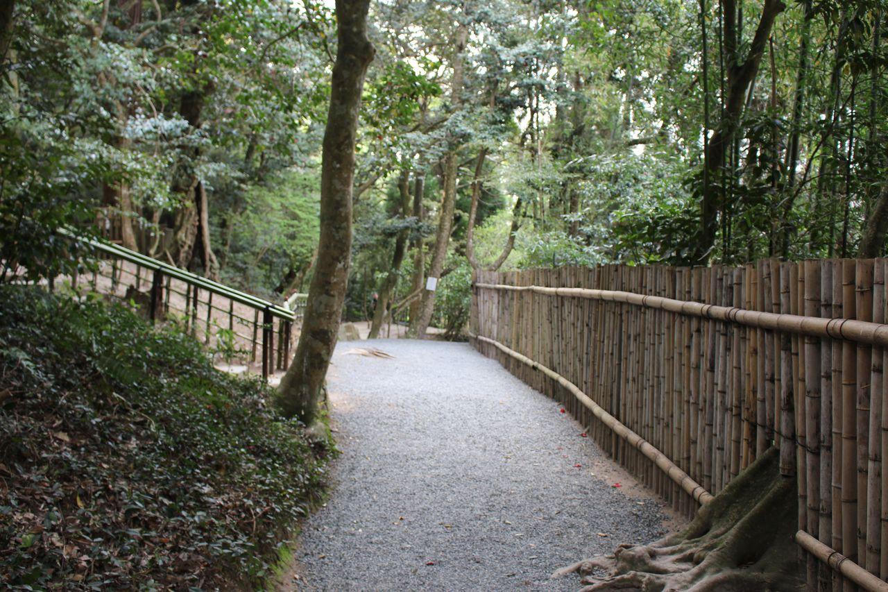 八重垣神社-31