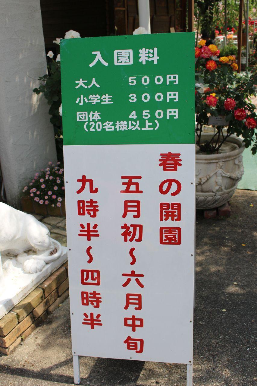 姫路ばら園-5