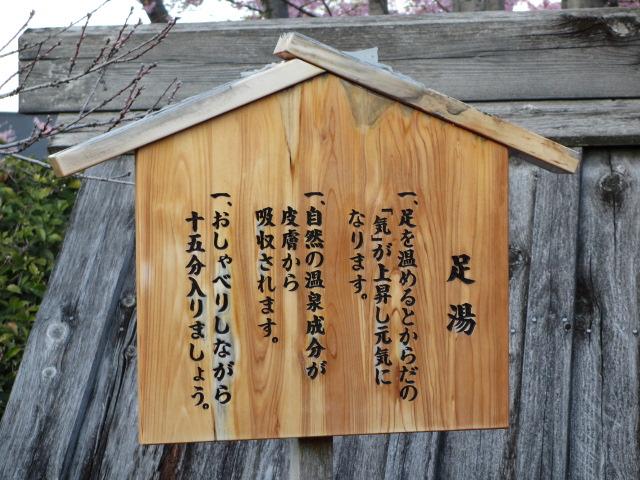 なばなの里2014-14