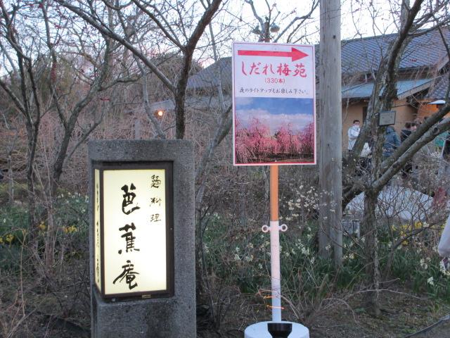 なばなの里2014-20