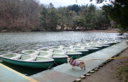 クイズ ボート
