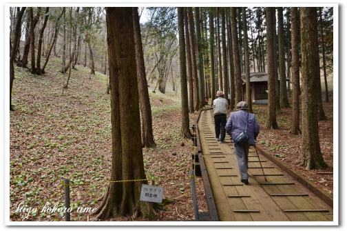 カタクリ山公園