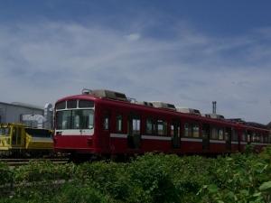 CIMG5071.jpg