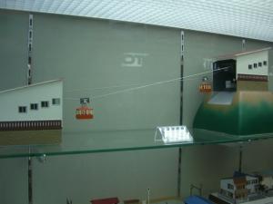 CIMG5240.jpg