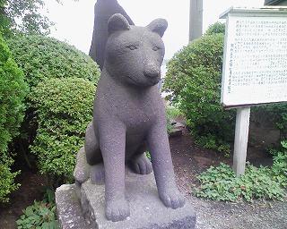 大館八幡神社_狛犬