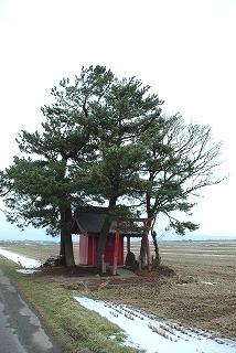 扇谷地稲荷神社