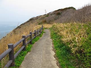 20100420_09_三崎公園_遊歩道_4