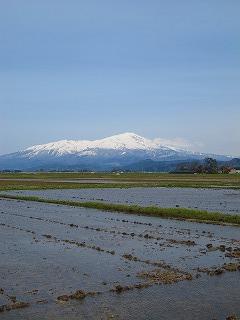20100427_03_鳥海山と田んぼ
