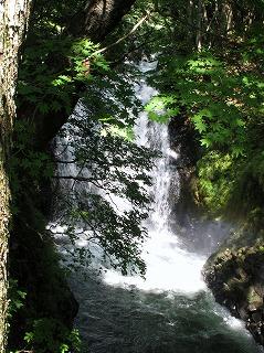 20100820_止滝神社_03