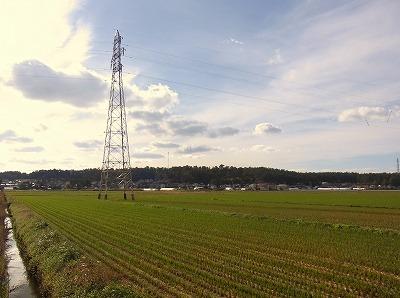 20101029_鉄塔_02