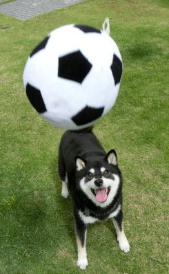サッカー 1