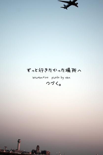 hikoki_20140530115350f2d.jpg
