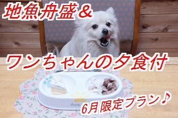 6gatu1_20140519024546c50.jpg