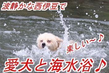 QOYI8t6Z_20140719024003cb7.jpg