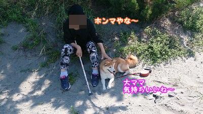 DSC_0030_.jpg