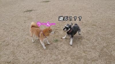 s-DSC_2.jpg