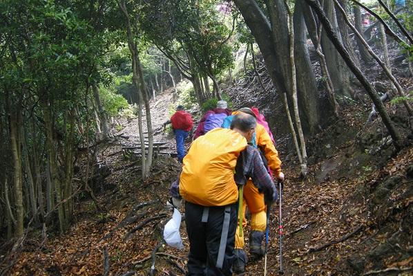 雨の登山道を行く