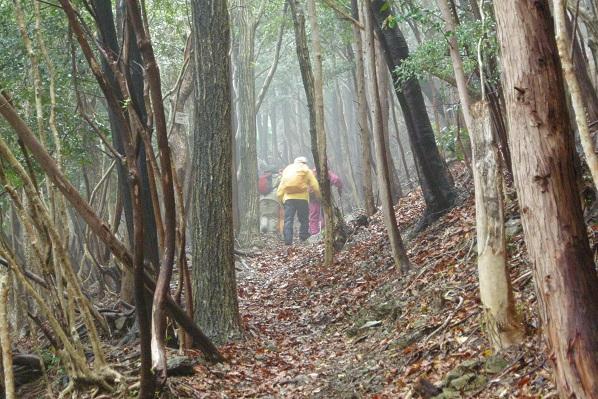 霧の山道を行く
