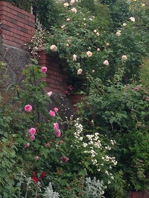 バラの庭M様邸