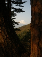 股のぞきからの富士山