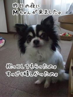 3_bDWrc3CY_tfHs1393584382_1393584738.jpg
