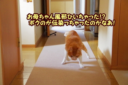 くしゃみ 3