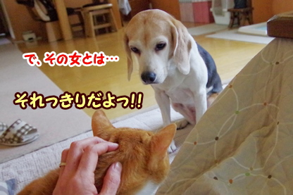 お見合い 6