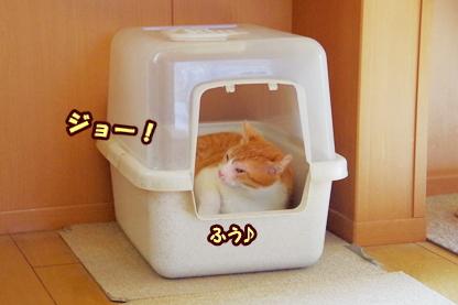 トイレ 3