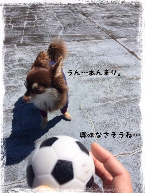 20140325_01.jpg