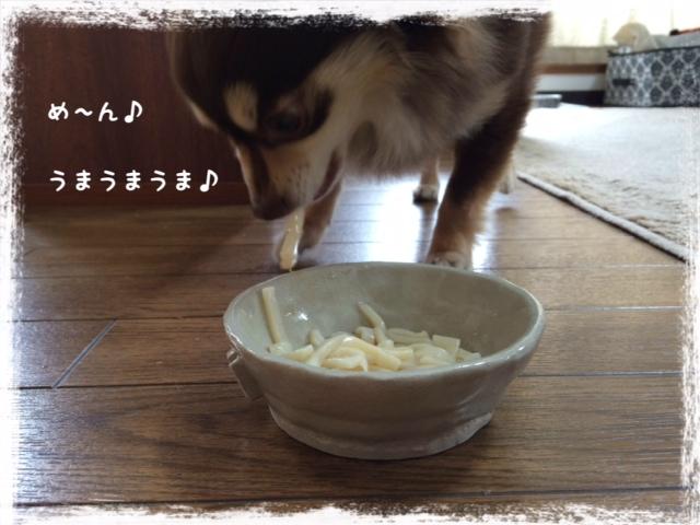 20140327_04.jpg
