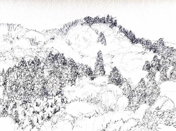 春の山月が瀬デッサン (600x445)