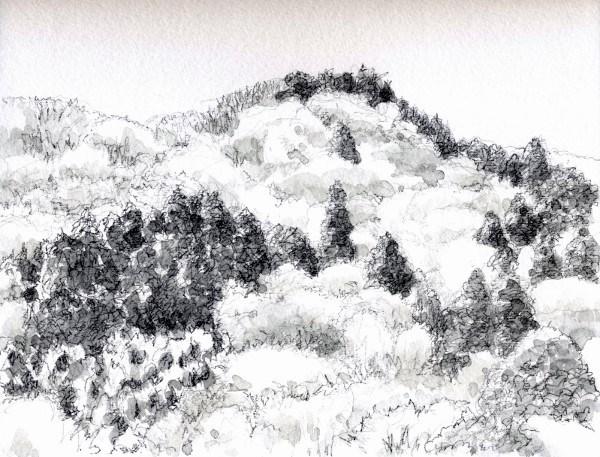 春の山月が瀬グリサイユ (600x457)