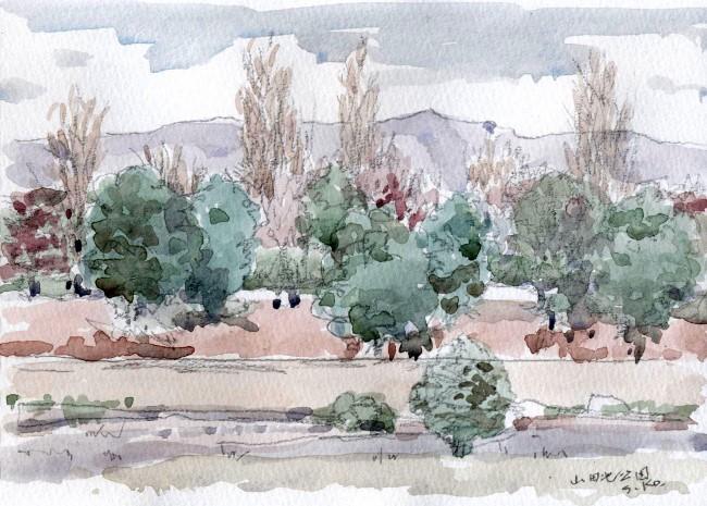 山田池公園 (650x465)